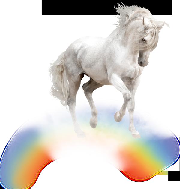 Meher Baba –White Horse